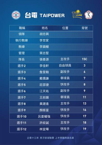 企排13年台電男排球員名單。