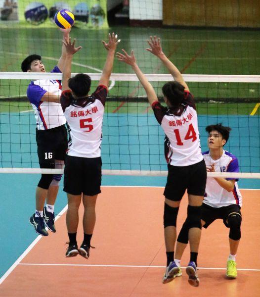 國北教大碩一學長張閔舜(左)吊球,大一學弟宋柏霆(右下)伺機救球/黃秀仁攝