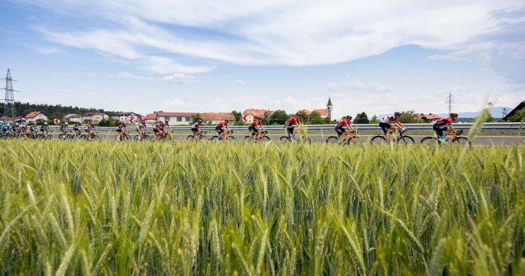 隊友們的賣力領騎,為鮑豪斯首站的好成績奠定基礎。Sportida.com提供