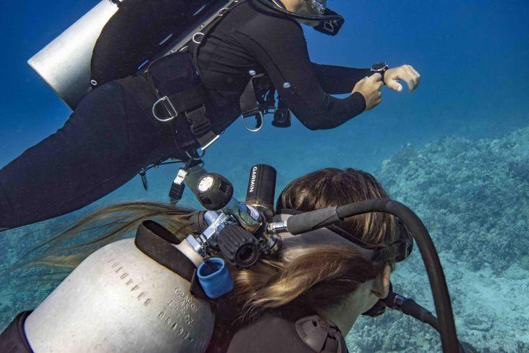 Garmin再創潛水新紀元,首創「SubWave潛聲納」突破性技術領先業界。