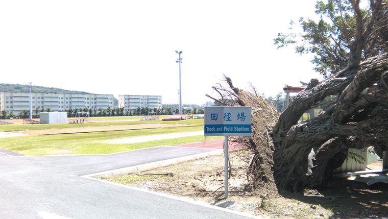 國訓中心受颱風影響,場地重傷害。圖/翻攝自國訓中心臉書